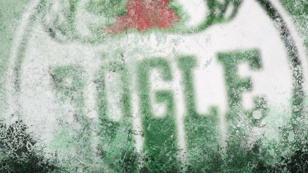 Betyg på säsongens nyförvärv i Rögle